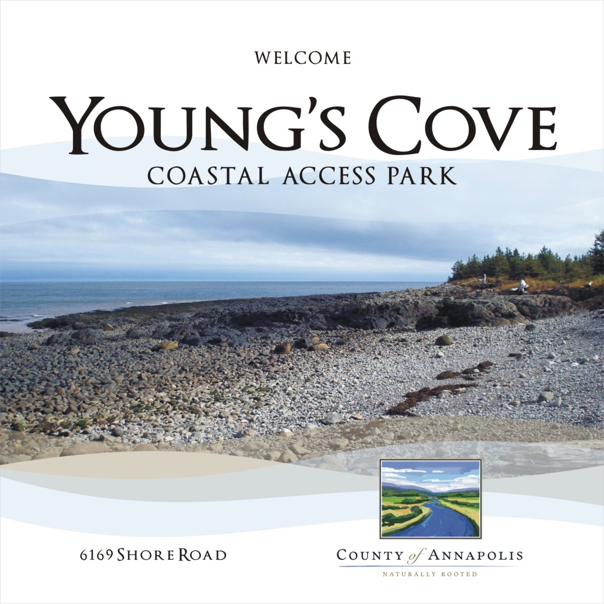 youngs cove 3x3